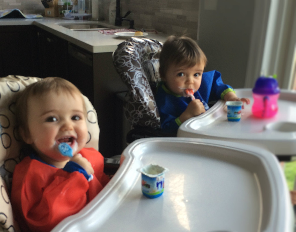 Twins Try Yogurt