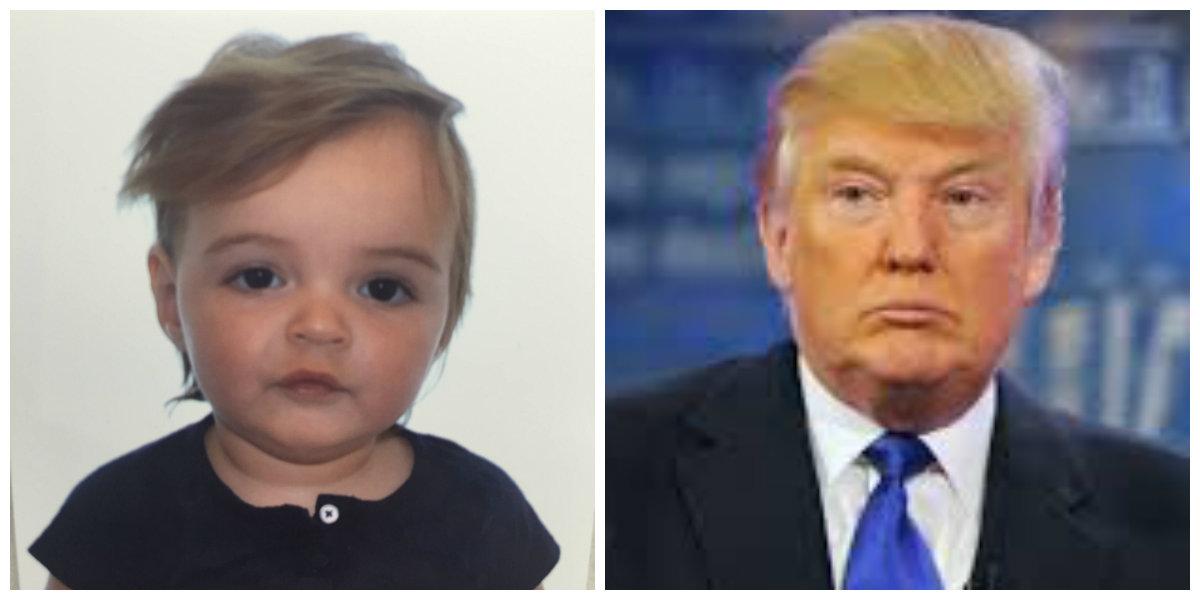 Everly vs Donald Trump