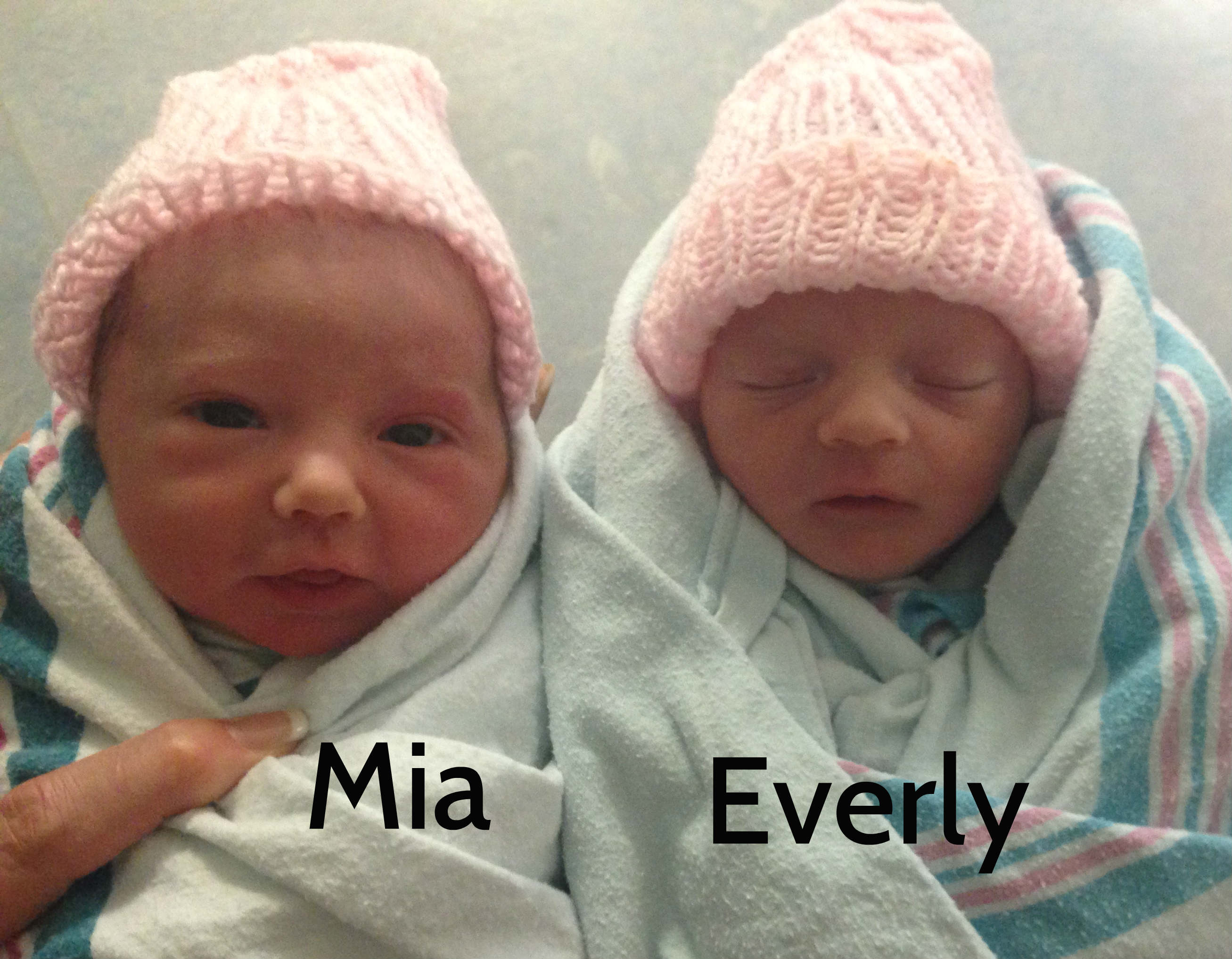 Nesting Story Twins