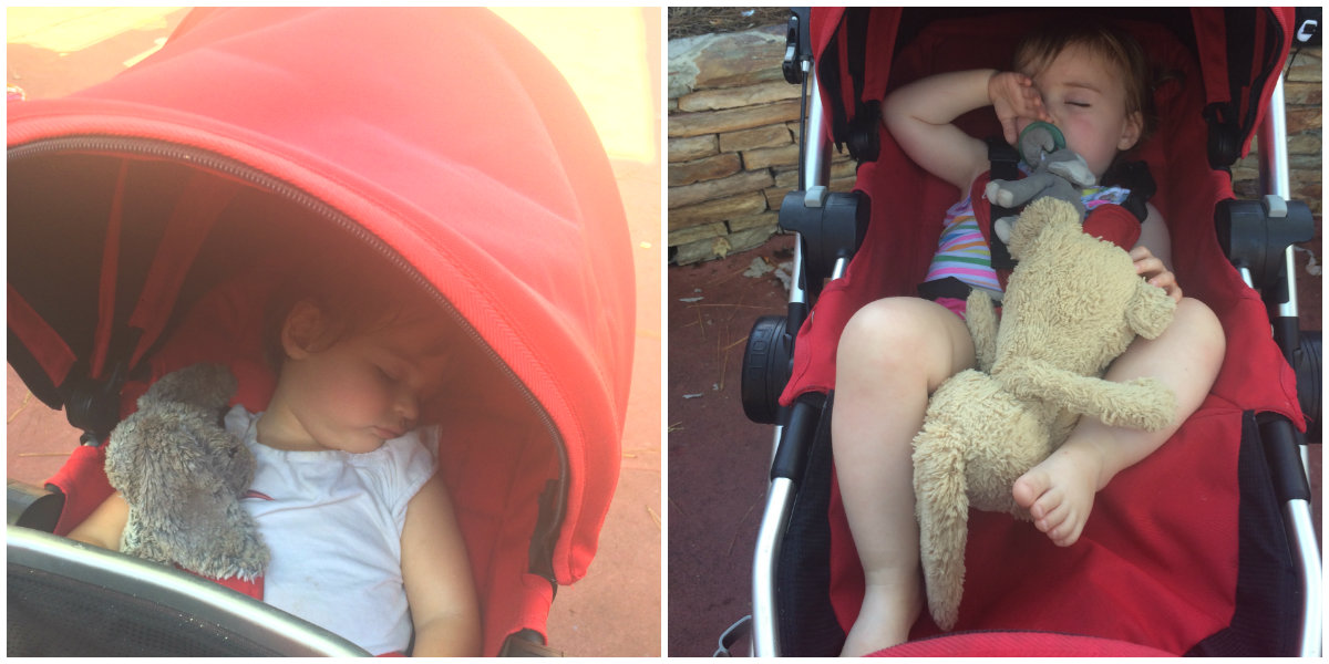 Twins sleeping in stroller at Disney World